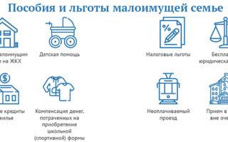 Какие меры социальной поддержки предусмотрены для малоимущих семей (граждан)?