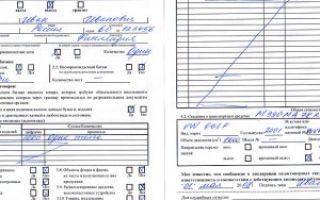 Как заполнить пассажирскую таможенную декларацию