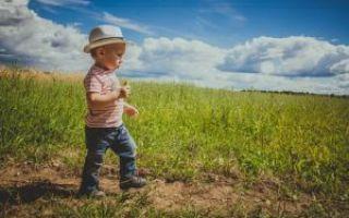 Как подарить земельный участок?