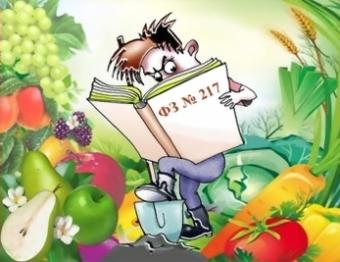 Каковы последствия выхода из членов садоводческого товарищества?