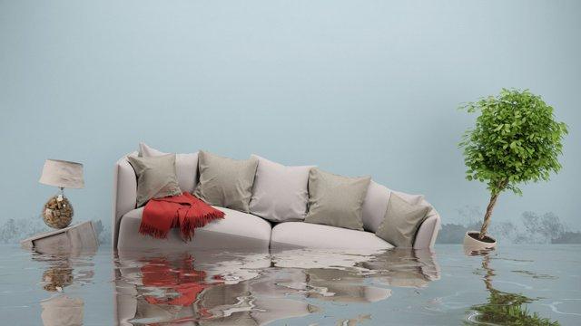 Что делать, если вас затопили?