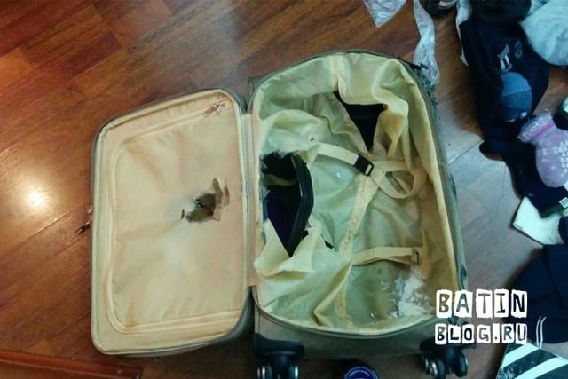 Претензия об утере багажа. Образец и бланк для скачивания 2020 года