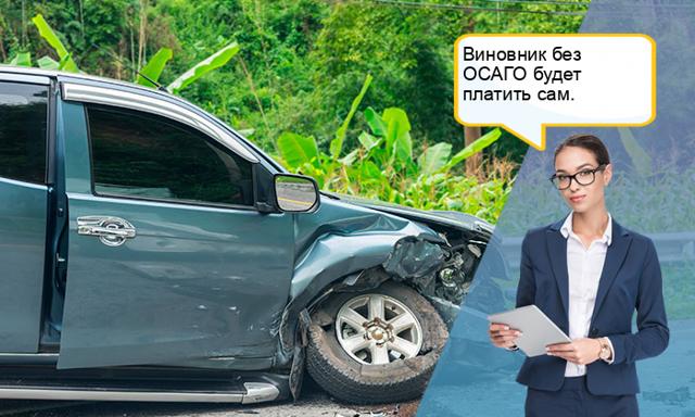 Действия при отказе страховой компании платить по ОСАГО