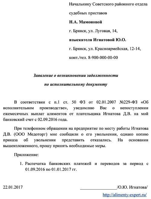 Исковое заявление об освобождении от уплаты задолженности по алиментам. Образец и бланк 2020 года